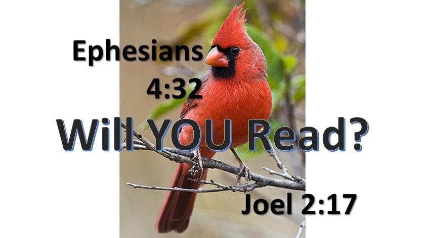 i-will-read-11-11-2016