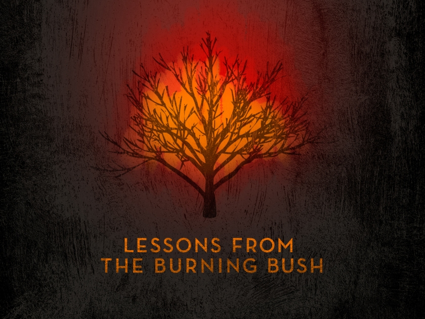 Lessons from the burning bush
