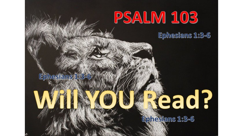 WILL YOU READ 9.12.2017