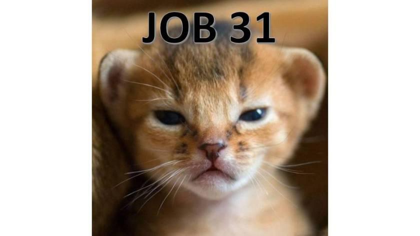 JOB31