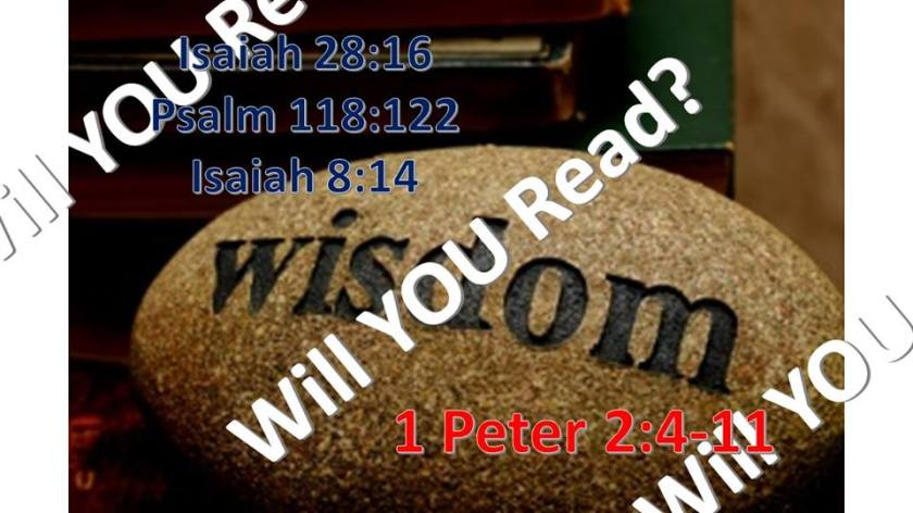 WILL YOU READ 10.11.2017